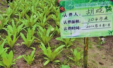 乳泉山庄-小Q农场土地认养