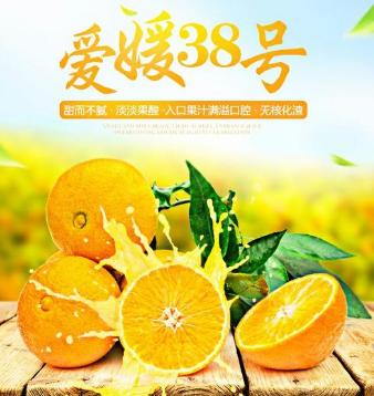 红果林果业柑橘认养区