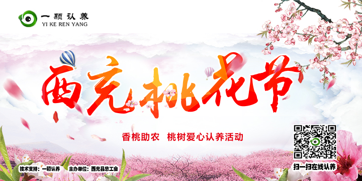 西充县桃花节桃树直播认养