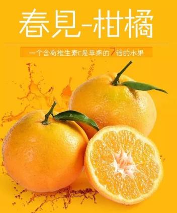 红果林果业柑橘认养区6