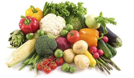 明全种植合作社蔬菜认养