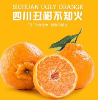红果林果业柑橘认养区7