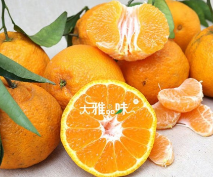 红果林果业柑橘认养区3