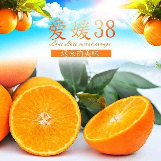 邱家山家庭农场——爱媛橙认养
